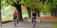 Cyclists-at-Lake-Constance
