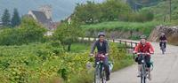 Cycling in Wachau Valley, Austria with UTracks travel