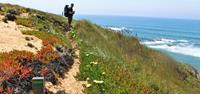 Hiker on the Rota Vicentina