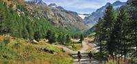 Hikers in Gran Paradiso National Park