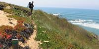 Europe's best new walks for 2016: Portugal's Rota Vicentina