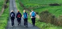 Group walking on the Camino