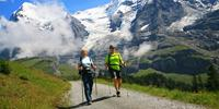 Walkers below Monch and Jungfrau on the Alpine Pass Route