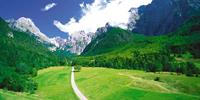 The wonderful - and green - Julian Alps