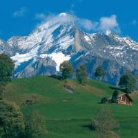The 3692m Wetterhorn as seen from Grindelwald in the Bernese Oberland. | Switzerland Tourism