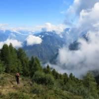 Alp Bovine, Tour de Mont Blanc | Sarah Hunt