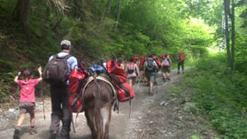 Family group hiking with donkeys around Mont Blanc | Kate Baker
