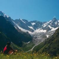 Spring flowers with breathtaking views above La Fouly, Switzerland | Sue Badyari