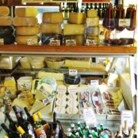 Cheese and wine in Vienna deli | Lilly Donkers