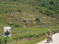 Cycling with trailer in the Wachau Valley, Austria |  <i>Kate Baker</i>