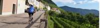 Cycling through the Wachau Valley enroute to Vienna |  <i>Jaclyn Lofts</i>
