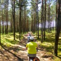 Cycling on the Curonian Spit | Gesine Cheung