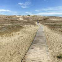 The Curonian Spit is a pre-historic sand dune peninsula | Gesine Cheung