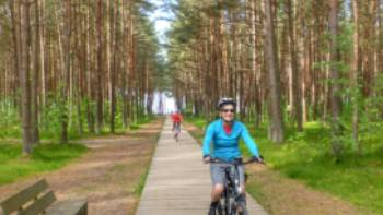 Our Baltic coast cycle will take you through Lithuania's lush northern pine forests | Gesine Cheung