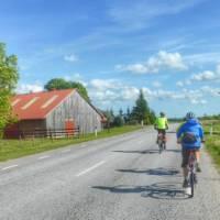Cycling through rural landscapes on Saaremaa Island, Estonia | Gesine Cheung