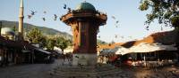 The many pigeons of Sarajevo's iconic Sebilj Fountain in Bosnia