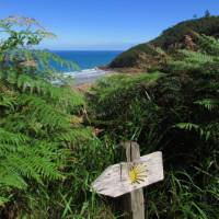 Way marking on the Camino del Norte in Spain | Andreas Holland