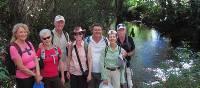 On the Camino Primitivo near Oviedo | Andreas Holland