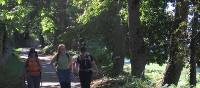 Hiking on the Camino Primitivo near Oviedo | Andreas Holland