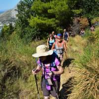 Explore Istria Your Way   One of Europe's best kept secrets