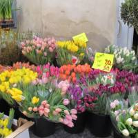 Flower stall in Copenhagen | Kate Baker