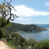 Winding roads near Ajaccio, Corsica | Monique Perras