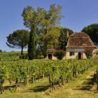 Beautiful Dordogne   Maurice Subervie