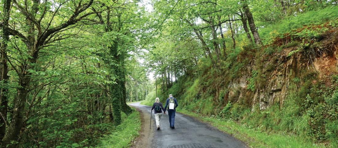 Walking the vibrant Camino Trail |  <i>Rob Mills</i>