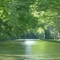 Canal du Midi near Carcassonne | Robin Spry