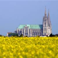Chartres cathedral   P Forget