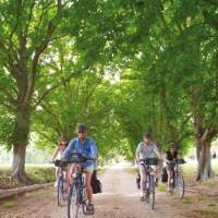 Cycling in Provence, France | Ewen Bell