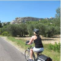 Cyclist in Provence, France | Phil Wyndham