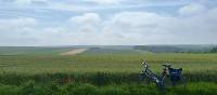 Bike resting in the Flanders Fields | Richard Tulloch