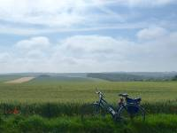 Bike resting in the Flanders Fields |  <i>Richard Tulloch</i>