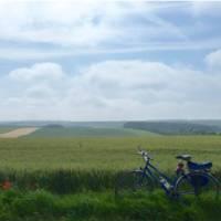 Bike resting in the Flanders Fields   Richard Tulloch