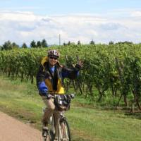 Cycling past vineyards in the Alsace region   Katie Roberts
