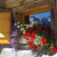 Room With a View, Tour du Mont Blanc | Linda Munns