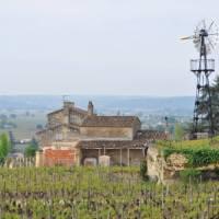 Scenery of Bordeaux, France | Deb Wilkinson
