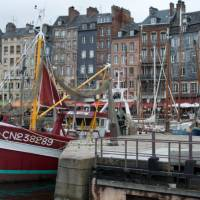 The harbour of Honfleur with its narrow houses and array of boats   Kate Baker