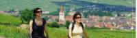 Walking through the scenic Alsace region of France
