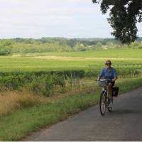 Cycling past vineyards in Bordeaux | Jaclyn Lofts