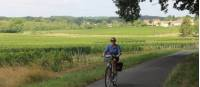Cycling past vineyards in Bordeaux |  <i>Jaclyn Lofts</i>