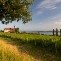 The Birnau Basilica on Lake Constance