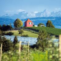 Immenstaad near Lake Constance, with the Swiss Alps in the distance
