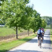 Cycling near Lake Constance   Erin Williams