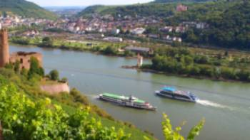 Discover Ehrenfels Castle near Rüdesheim on our Rhine Valley Bike & Barge in Germany