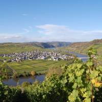 The village of Trittenheim, on the middle Moselle   Christiane Heinen