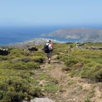 Walking into Gavrio on the Andros Trail