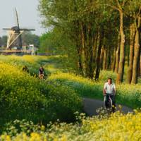 Travel the Dutch countryside the way the locals do | NBTC