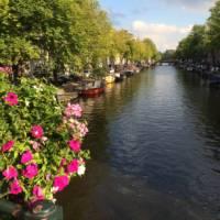 Canal in Amsterdam | Hilary Delbridge